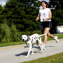 Exercise with your dog to lose weight after lap band.