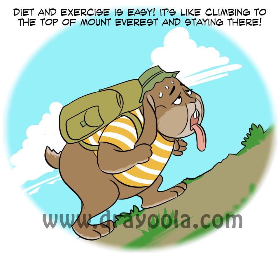 When diet and exercise do not work