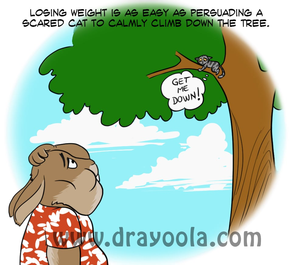 Losing Weight is Scary – You're Not Alone